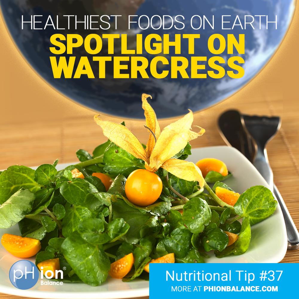 Healthiest Foods on Earth: Spotlight on Watercress