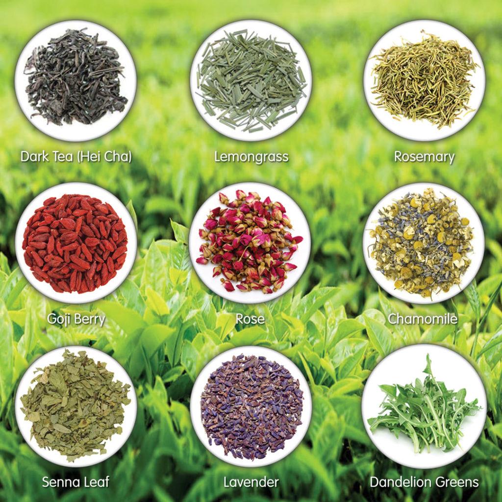 July Tea Giveaway - Tea Blend ingredients